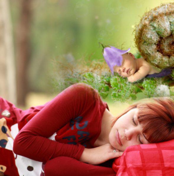 Sny – jak je zapamiętać, zrozumieć i wykorzystać, warsztaty
