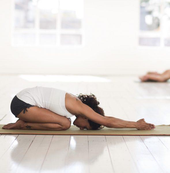 Yoga Klasyczna, bezpłatne zajęcia otwarte