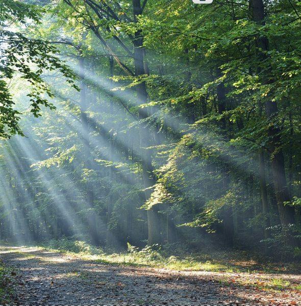 Uzdrawianie Duchowe