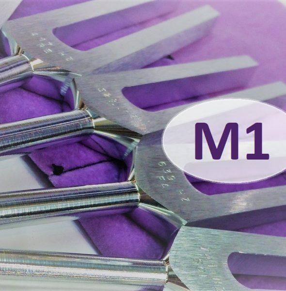 Kurs Doszkalający – M1