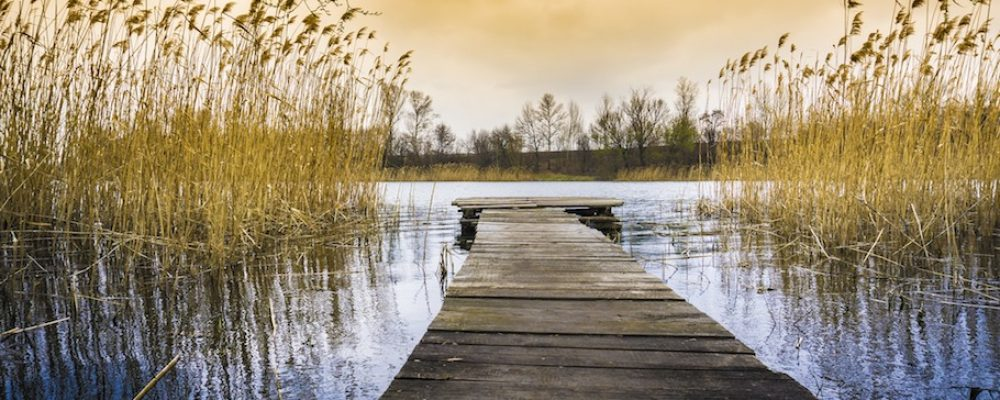 Cisza – lek na wagę złota