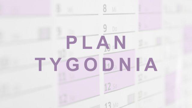 Plan grupowych zajęć stałych