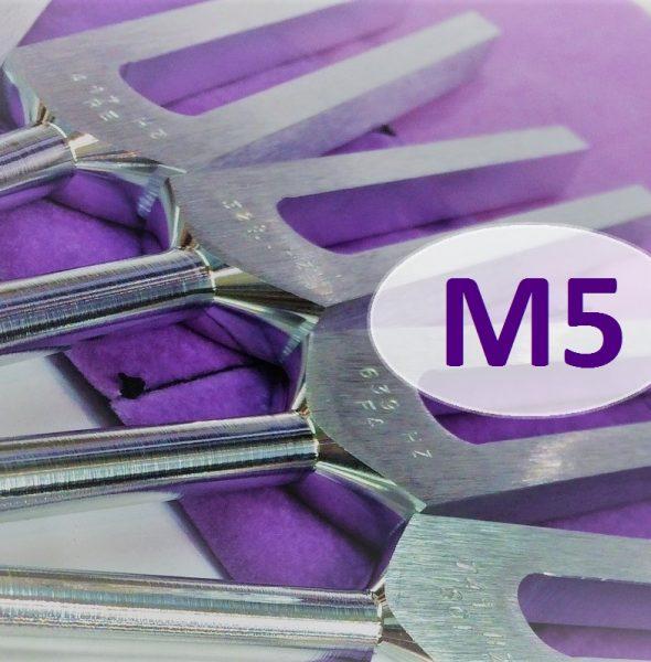 Kurs Doszkalający M5