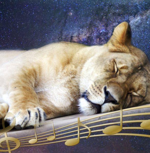 Muzyka Dla Zdrowia – czwartki